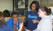 A hands-on demonstration of nanotechnology in the AP Nanotechnology course at Everett High School in Lansing MI.